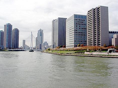 隅田川沿い